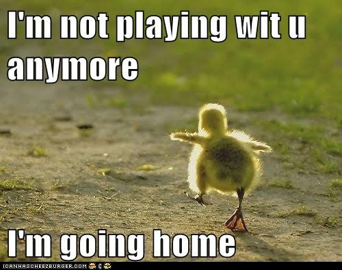 funny-animal-captions-animal-capshunz-you-dont-play-fair