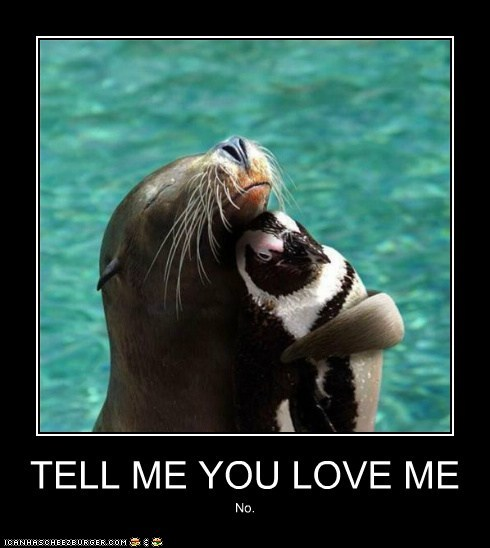 Cute love pictures with captions