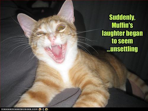 Evil laughing cat