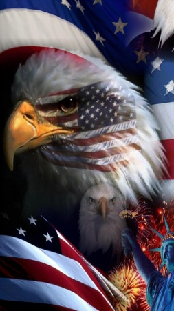 USA_Flag_Eagle-wallpaper-10731292